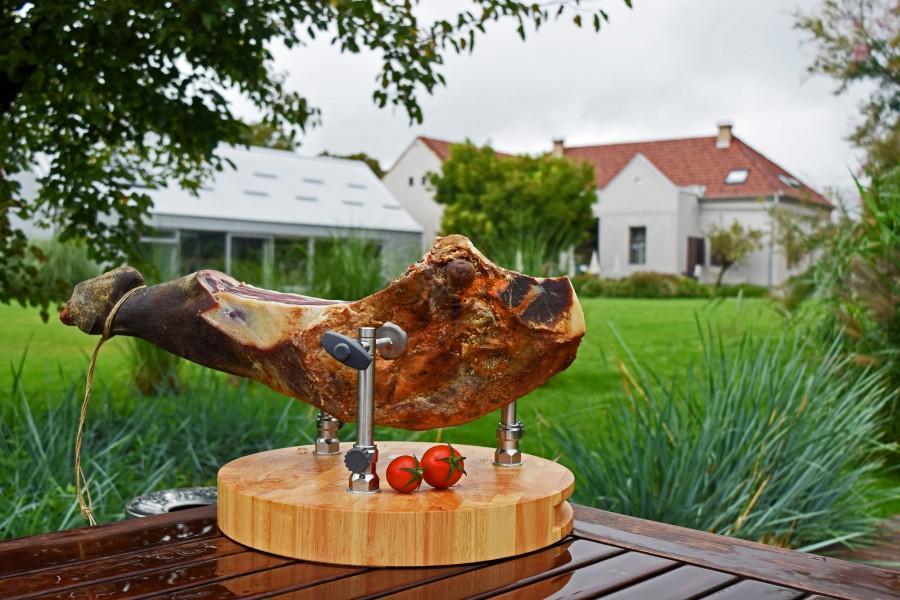 Ham in Garden